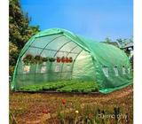 Free Shipping Australia Wide - Grow All Year Round