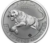 Silver Coin 1oz Perth Mint Canadian Mint